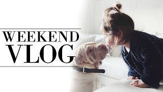 WEEKEND VLOG   FAMILY OF 4