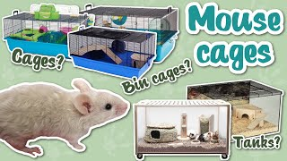 What cages are best for mice?