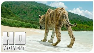 PI and the tiger escaped, ending - Life of PI (2012) - Moment of the movie