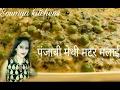 Punjabi methi matar malai in Hindi recipe restaurant style try now