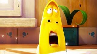 LARVA - HAY FEVER | Cartoon Movie | Videos For Kids | Larva Cartoon | LARVA Official