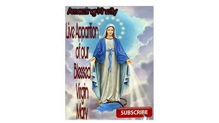 live!!!  apparition of the blessed virgin mary