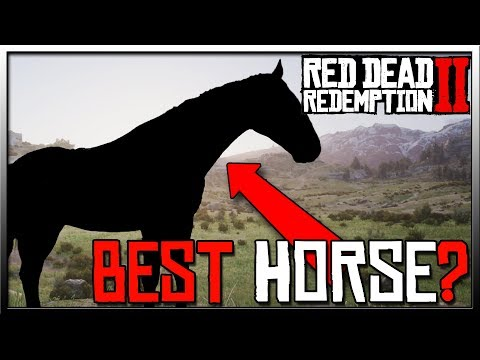 Red Dead Redemption 2 Best Horse and It's Not The Rose Grey Bay Arabian! Red Dead 2 Horses