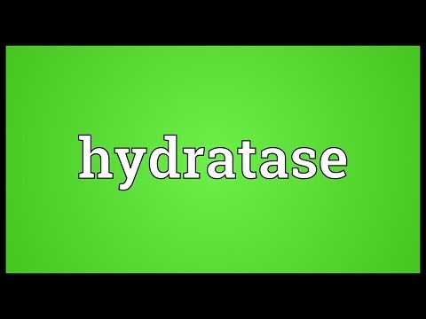 Hydratase Meaning