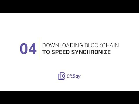 04 Downloading Blockchain To Speed Synchronize
