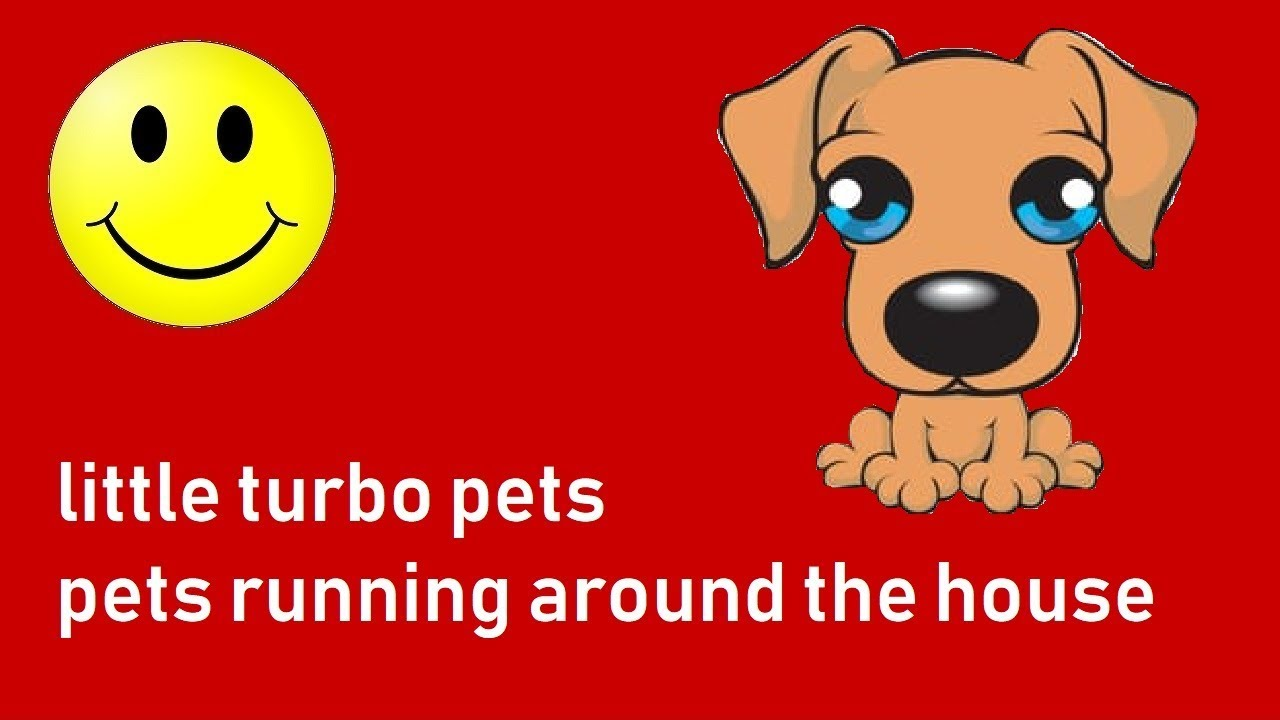 little turbo pets || pets running and flying around the house
