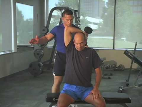 Seated One Armed Dumbbell Extension