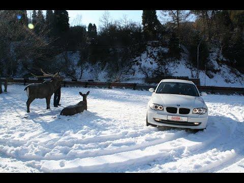 BMW 1 Series (БМВ 1 серия)