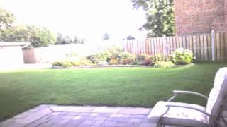 the backyard Thumbnail