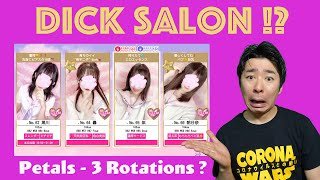 What Is A Pink Salon ? |  A Unique Japanese Brothels