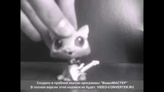 Music video-Пицца -Душа летела над лужами...