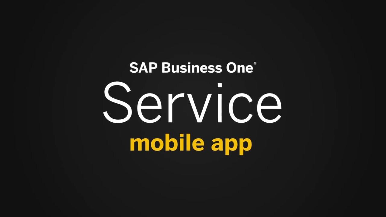 SAP Business One Service App | Seidor UK | SAP Gold Partner
