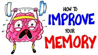 How To Improve Your Memory RIGHT NOW!