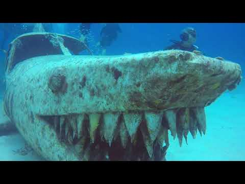 Sharkplaneo Dive with Sunchaser Scuba and UftS Advanced Open Water Divers - Aug 2021