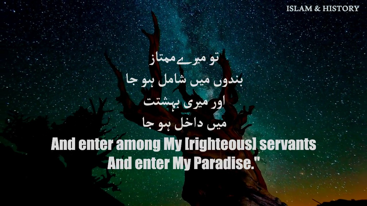 Surah AL FAJR by Omar Hisham Al Arabi Quran Recitation  سورة الفجر - كاملة