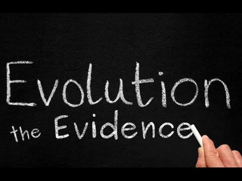 Evolution: The Evidence - Complete Documentary
