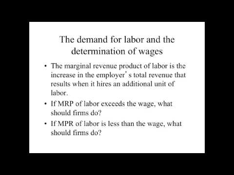 Microeconomics - Labor Economics (part 1)