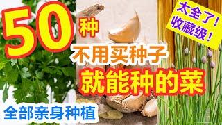 50种免费蔬菜水果种子【大集合】全网最全不用花钱买种子就能种的菜, 全部亲身种植体验 Top 50 free vegetables and fruits seeds