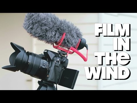 How To Record in the Wind