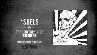 *shels- 'The Conference of the Birds'