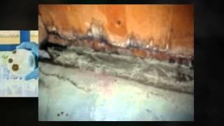 Zero Hazard | Mold Removal
