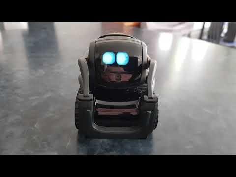 Robot Vector Anki mini Test version Française