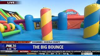 David Does It: The Big Bounce