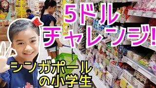 シンガポールの庶民派スーパーで5ドルでお買い物をしてきました   計算...
