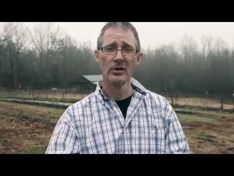 Dorking Birds trailer for Dorking Birds Training Video