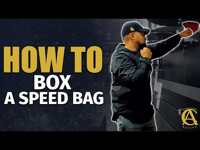 How to Box a Speed Bag [ Have Fun and Switch it up! ]