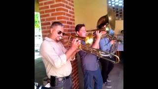 Tamborazo Banda Autentica la Huerta - El Son de los Aguacates