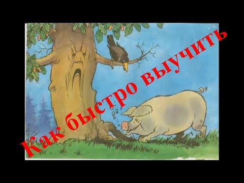 Как выучить басню за 5 минут свинья под дубом
