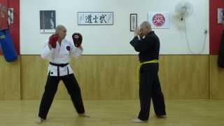 Zen Do Ka defense against a Thai Roundouse Kick to the thigh