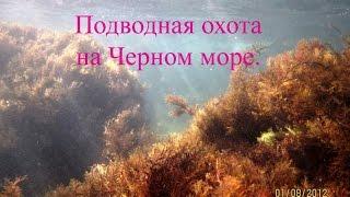 Подводная охота: Подводная охота на Черном море. KiselevSA(