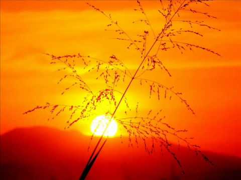 William Hawk - Sunrise ((Basement Remix))