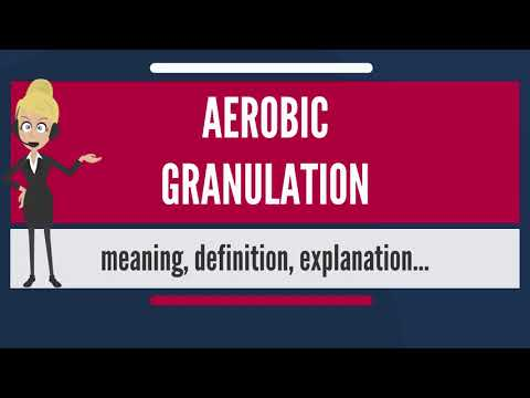 What is AEROBIC GRANULATION? What does AEROBIC GRANULATION mean? AEROBIC GRANULATION meaning