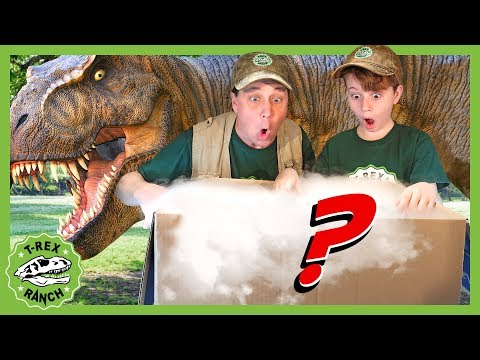 Download  Search for New Dinosaur Theme Park! GIANT Mystery Box with T-Rex Dinosaurs for Kids! T-Rex Ranch Gratis, download lagu terbaru