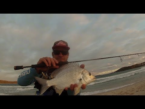 Beach Fishing With Light Tackle