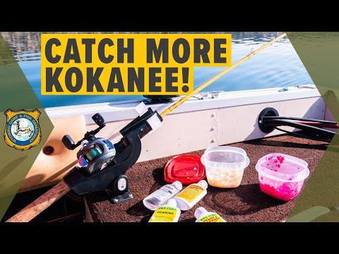 Kokanee Salmon Fishing - How To Catch More Kokanee