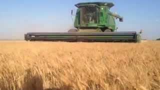 West Texas Wheat Harvest 2014