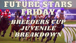 BREEDERS CUP JUVENILE RACES PREVIEW | FRIDAY NOV. 6, 2020