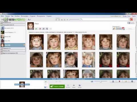 Обзор программы Picasa