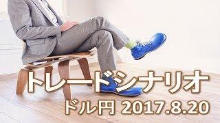 【FX:ドル円 2017.8.20】トレードシナリオ解説 thumbnail