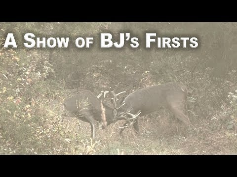 A Show of BJ's Firsts
