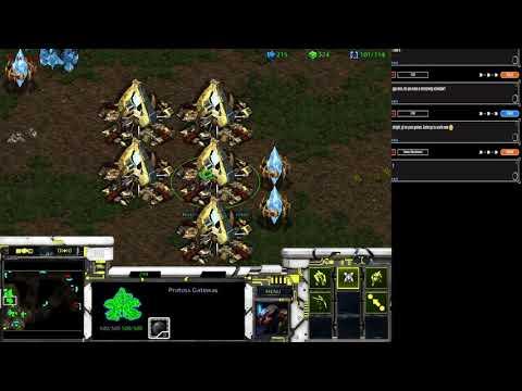 5.12.19 Stream |  Connor5620 Protoss Vs Zerg