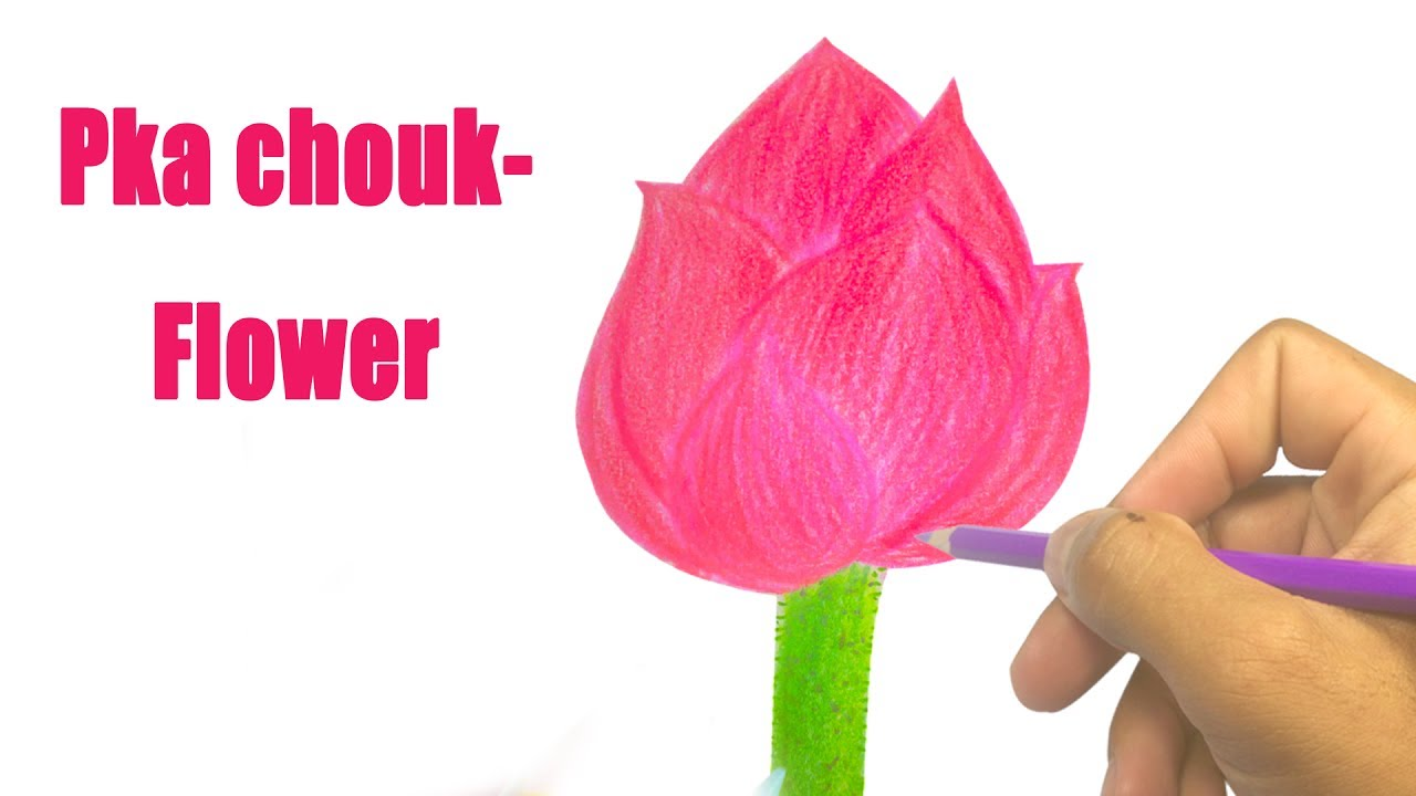 How To Draw Pka Chouk Flower Drawing A Beautiful Flower Easy And Fast  Youtube Videos