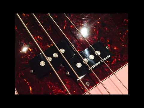 Seymour Duncan Quarter Pounder P Bass Pickup Test