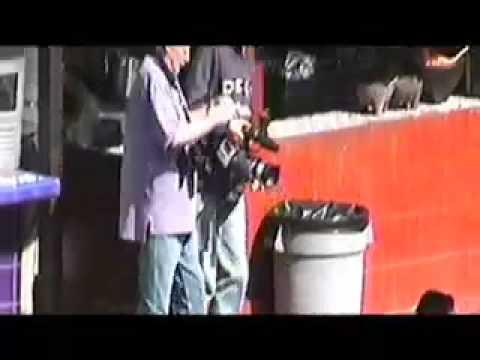 YORK SHACKLETON Guerilla Filmmaker