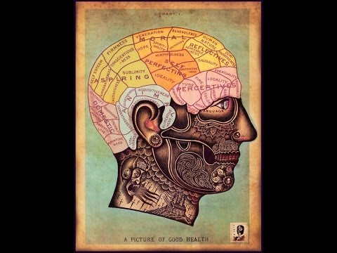 Psychoanalysis in a Crazy Nutshell!