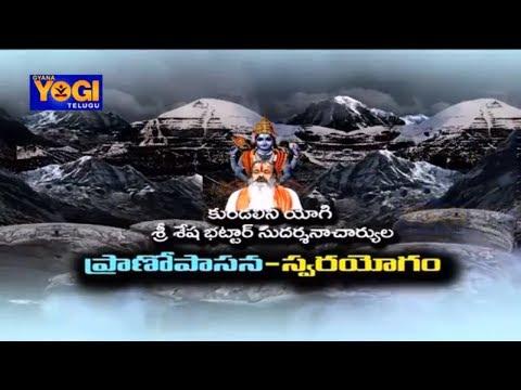 Swarayoga | Episode - 22 | Self- Realization | శ్రీ శేష భట్టార్ సుదర్శనాచార్యుల  | Gyana Yogi